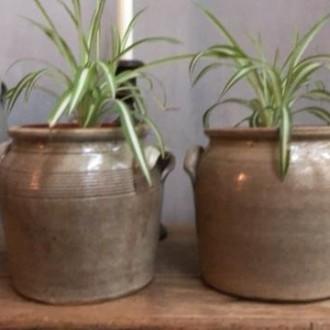 Franse grespotten klein voor planten