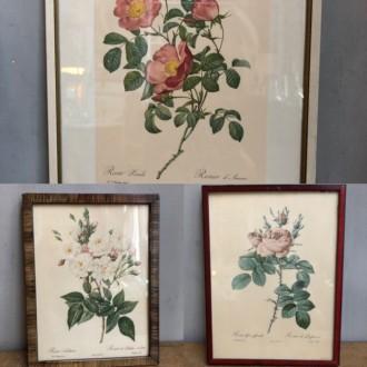 Vintage rozen schilderijtjes in verschillende maten