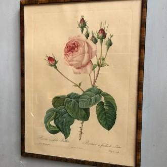 Vintage rozen schilderij
