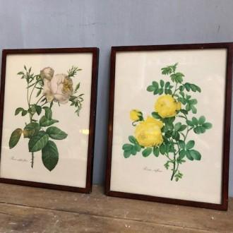 Vintage rozen schilderijtjes