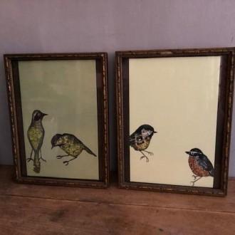 Oude lijstjes met vogelprenten